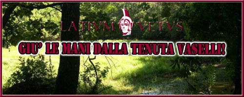 Header Volantino Vaselli